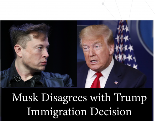 musk-disagrees-with-trump-immigration-decision
